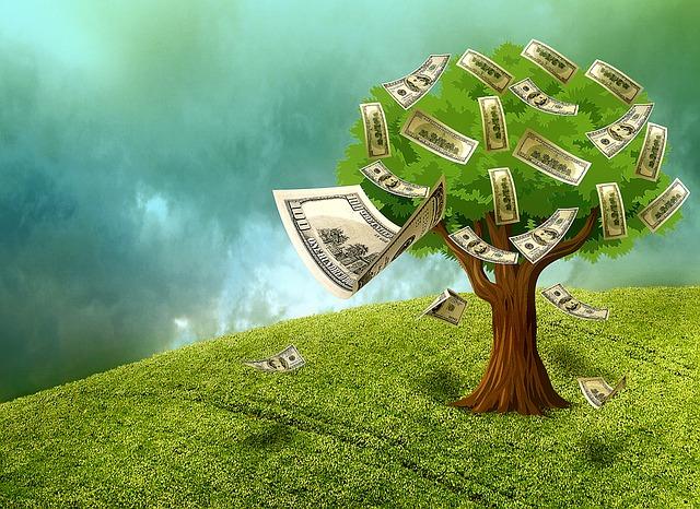 bankovky na stromě