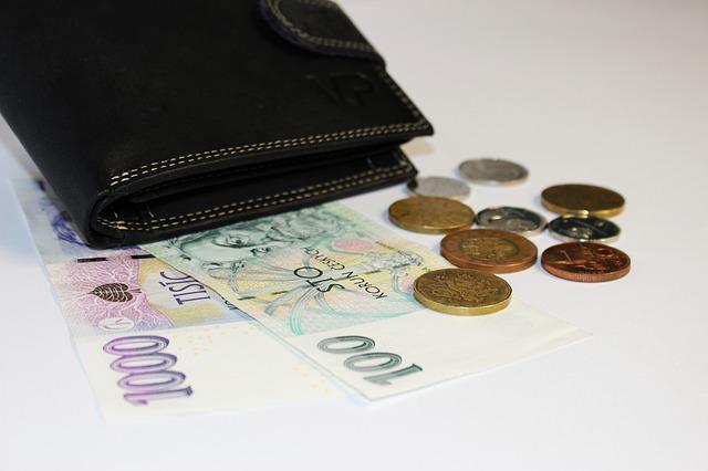 peníze u peněženky